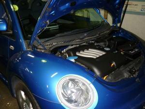 new-beetle